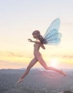 Fairy_s